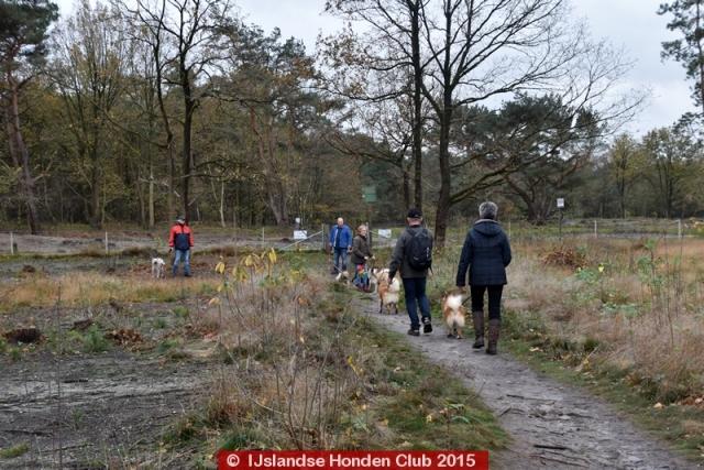 Najaarswandeling november 2015 Hilversum